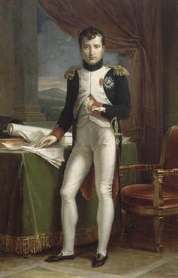 Napoleon as Colonel of Grenadiers of the Guard