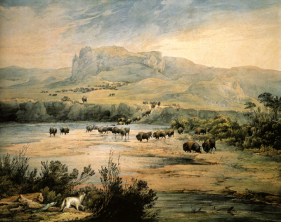 Landscape With Herd Of Buffalo On The Upper Missouri