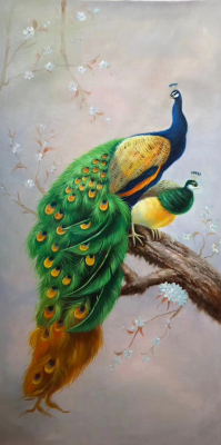 Peacock Paintings N07