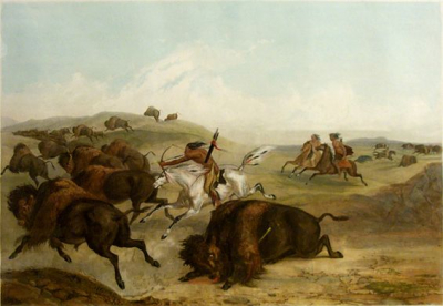Indians Hunting the Bison