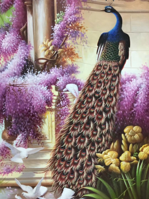 Peacock Paintings N06