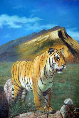 Tiger Paintings N032
