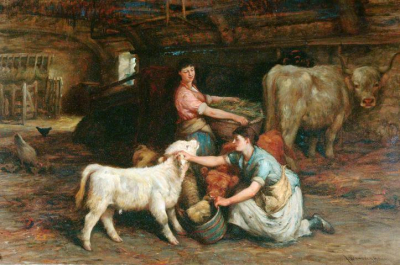 Feeding the Calves