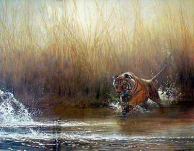 Tiger Paintings N024