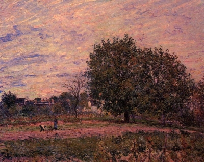 Walnut Trees, Sunset - Early Days of October