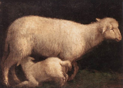 Sheep and Lamb
