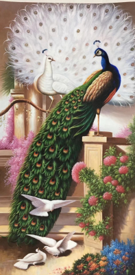 Peacock Paintings N04