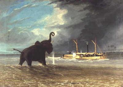 Ma Robert and Elephants in the Shallows of the Shire River 1858