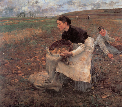 October - Gathering Potatoes
