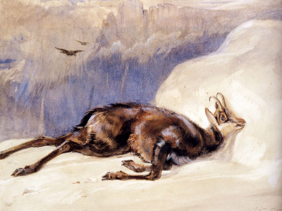 The Chamois, Sketched In The Tyrol