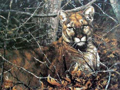 Tiger Paintings N018