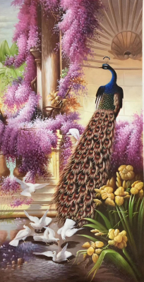 Peacock Paintings N05