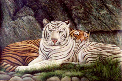 Tiger Paintings N016