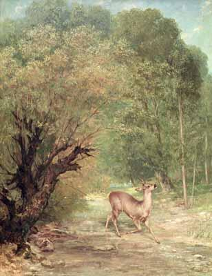 The Hunted Roe Deer on the Alert